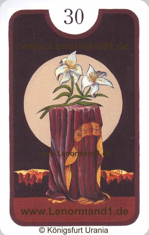 Die Lilie Zigeuner Lenormand Tageskarte heute