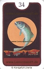 Fische von den Zigeuner Lenormandkarten