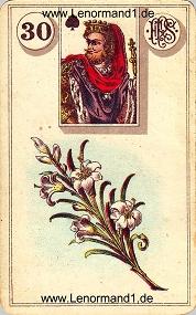 Lilie, antikes Piatnik Lenormand