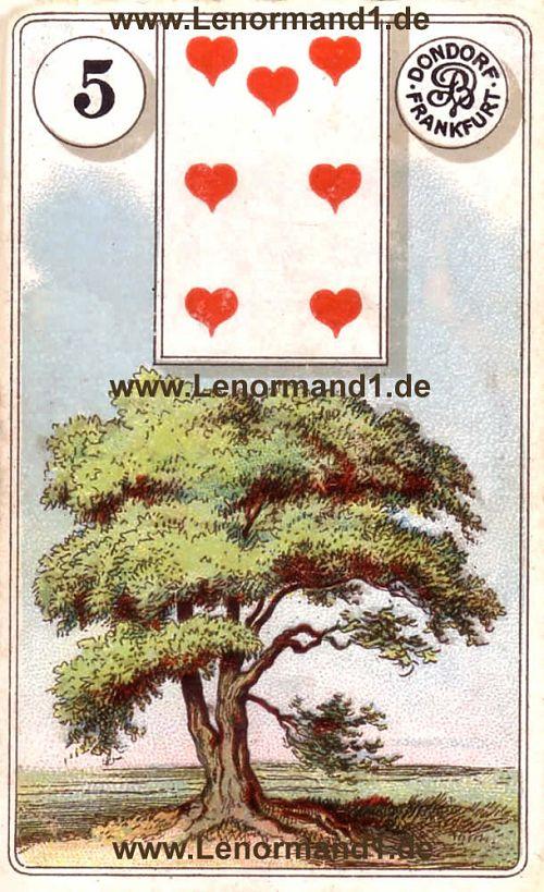Der Baum Dondorf Lenormand Tageskarte heute