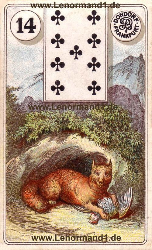 Der Fuchs Dondorf Lenormand Tageskarte heute