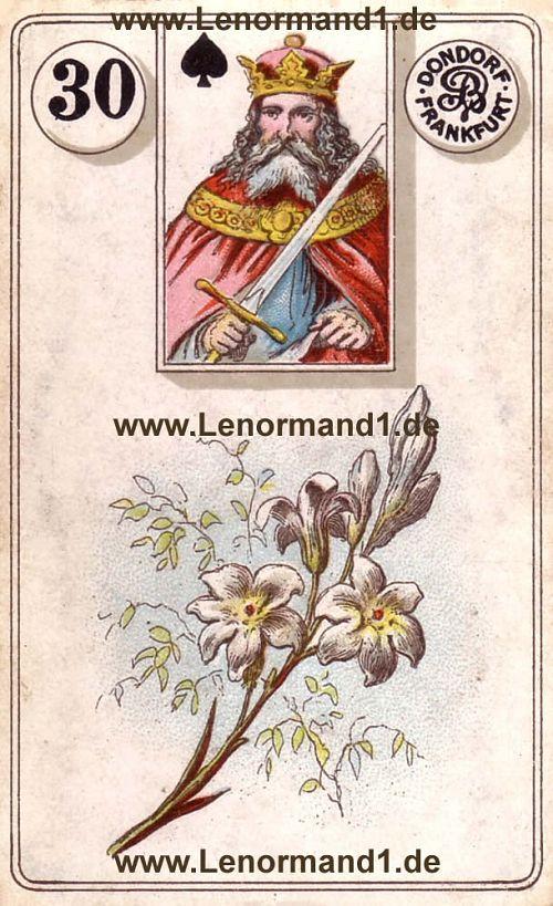 Die Lilie von dem antiken Dondorf Lenormand