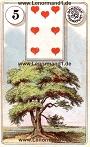 Baum von den antiken Dondorf Lenormandkarten
