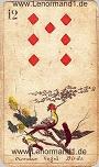 Vögel von den antiken Lenormandkarten