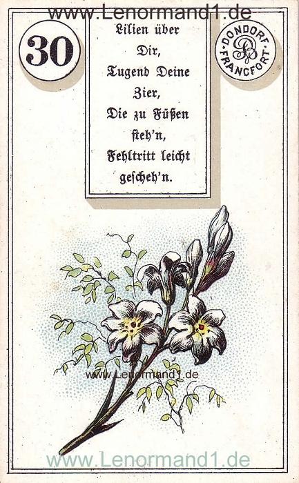 Die Lilie Dondorf Verse Lenormand Tageskarte heute