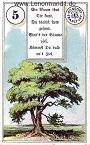 Baum von den antiken Dondorf Lenormandkarten mit Versen