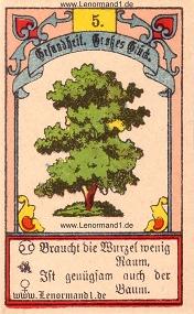 Baum, Gustav Kühn Lenormand