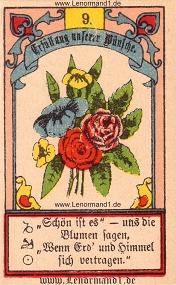 Blumen, Gustav Kühn Lenormand