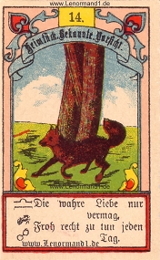 Fuchs, Gustav Kühn Lenormand