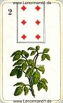 Der Klee antike Lenormandkarten der vereinigten Stralsunder Spielkartenfabriken AG