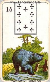 Bär, antikes Stralsunder Lenormand