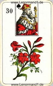 Lilie, antikes Stralsunder Lenormand